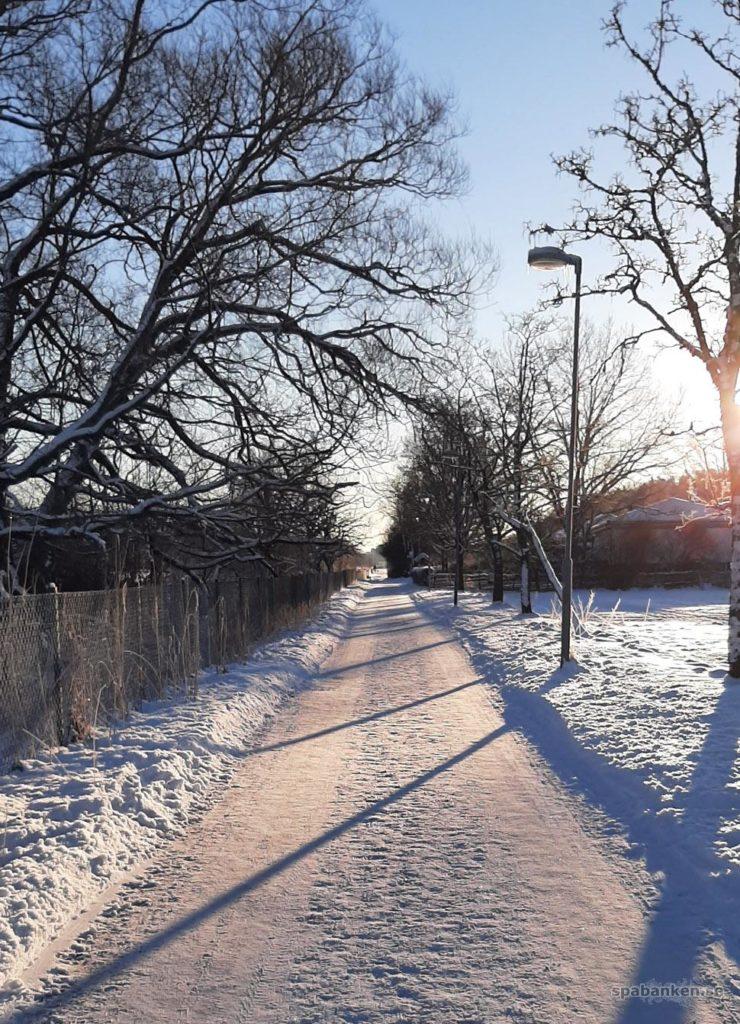 Väg med snö