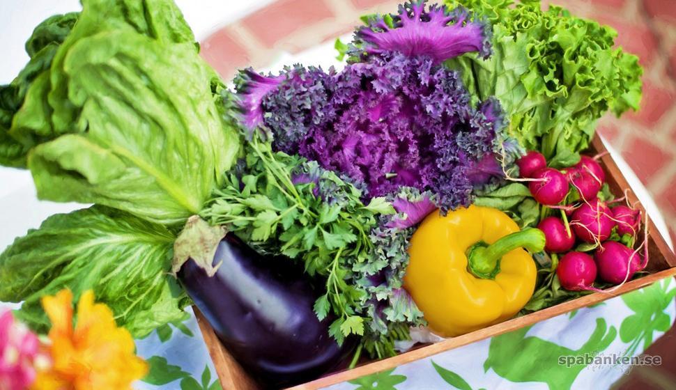 Att äta färgrikt är bra för vår folkhälsa.